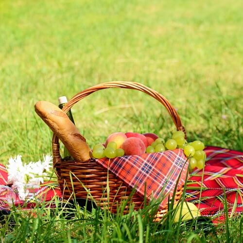 Packing the perfect picnic basket
