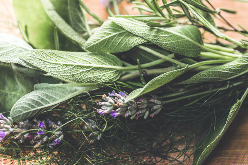 Provence Herbs and a rustic bouquet with salvia, lavender, dill, rosemary