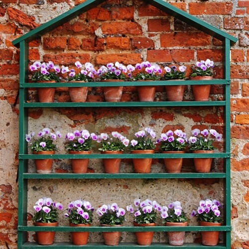 Start your urban garden with these ideas